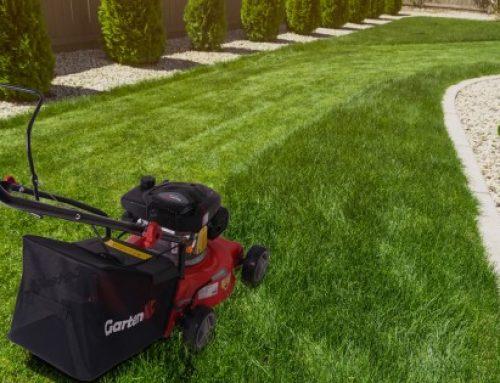 Motorna kosilnica za vaš vrt: kako izbrati pravo?